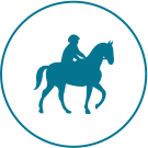 Icone Agences de voyages et tourisme équestre