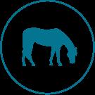 Icone éleveurs, association d'éleveurs