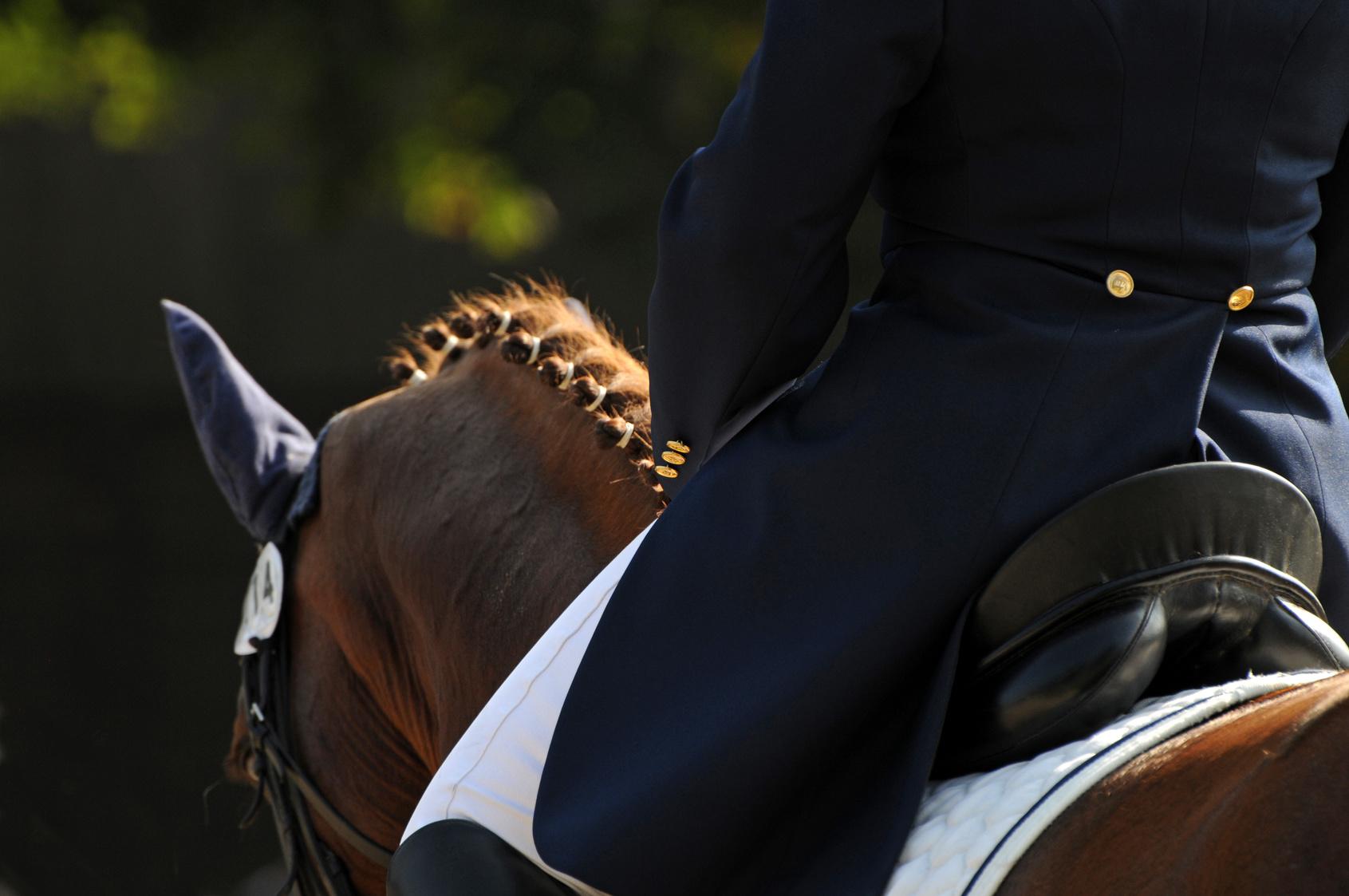Tarifs des billets salon 3e salon du cheval d 39 angers for Billet salon