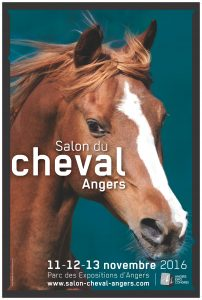 affiche-salon-cheval_2016_print_01